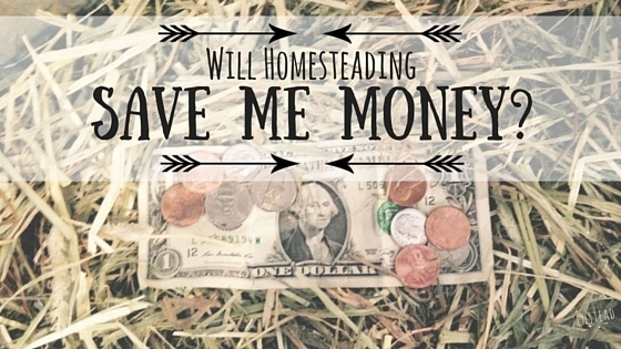 Will Homesteading Save Me Money