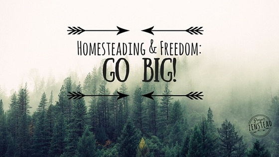 Homesteading & Freedom: Go Big!