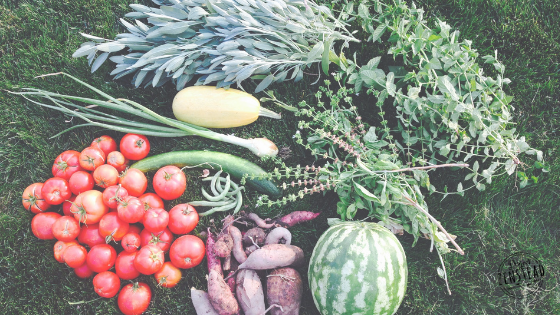 Six Things You Need to Know Before Planting Your First Garden