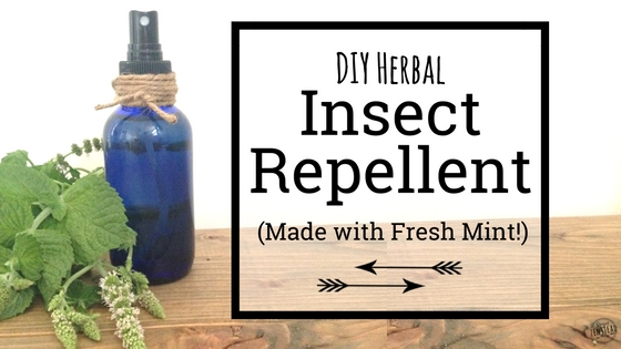 DIY Herbal Insect Repellent