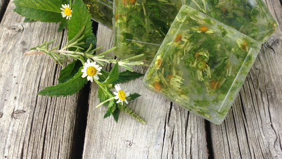 How to Make Dried Herb Soap with Mint, Chamomile & Rosemary