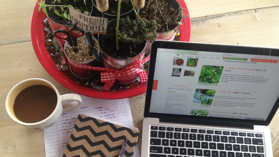 Blogging about Homesteading: What I've Learned after Two Years