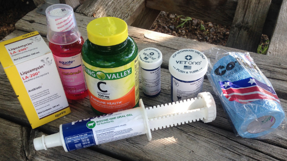 How to Stock a Goat First Aid Kit + Full List of Supplies!
