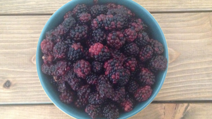 How to Save Money on Frozen Fruit & Berries By Freezing it Yourself!